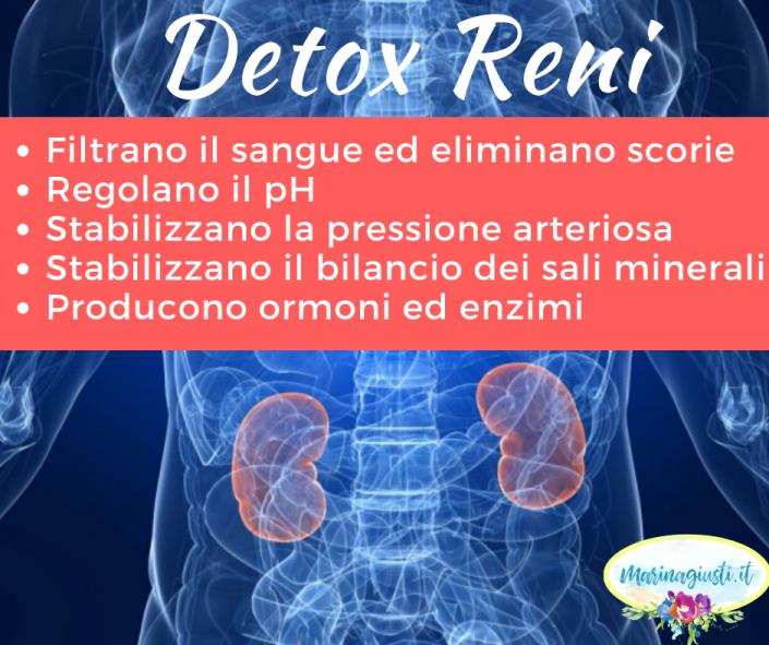 detox reni depurazione